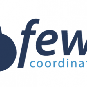 Fewzion management system